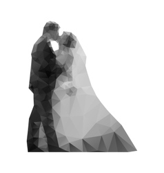 Wedding kiss the bride and groom vector