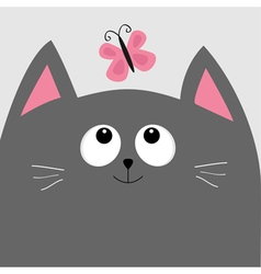 Gray cat head looking at butterfly insect cute vector