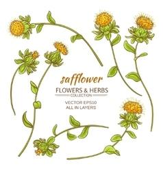 safflower set vector image vector image