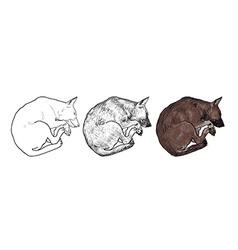 Sleeping dog vector image