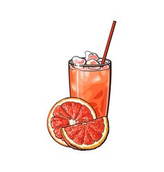 Grapefruit half slice glass of juice with ice vector