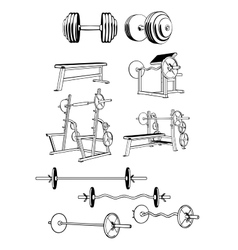 Gym set vector
