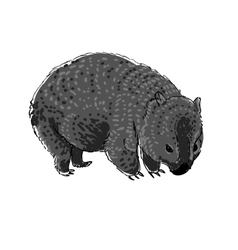 Australian animal Wombat in doodle style vector image