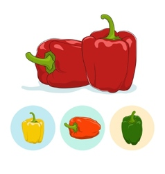 Icons bell peppersweet pepper or capsicum vector image