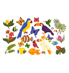 Set of exotic flora and fauna in cartoon style vector