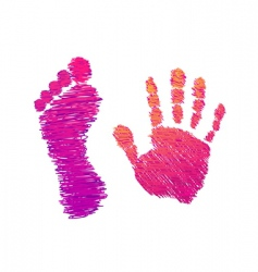 hand and foot vector image