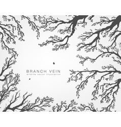 Tree branches with leaves and forest vector