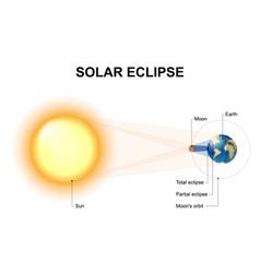 Solar eclipses vector