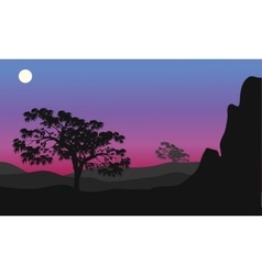 Silhouette of tree at the night vector