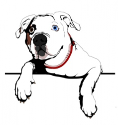 curious bulldog vector image