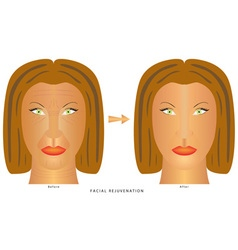 Face changes wrinkles vector image vector image