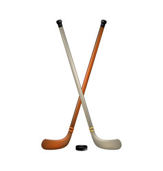Two crossed ice hockey sticks and puck vector
