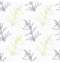 Hand drawn tarragon branch stylized black and vector