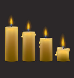 candles with fire set row vector image vector image