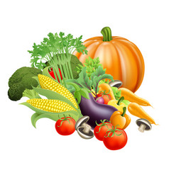 healthy fresh produce vegetables vector image vector image
