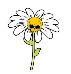 Flower of death chamomile with skull head skeleton vector