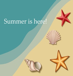 Sea text frame with shells and sea stars vector