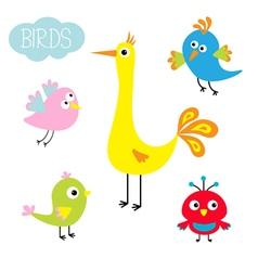 Cartoon bird set cute cartoon character funny vector