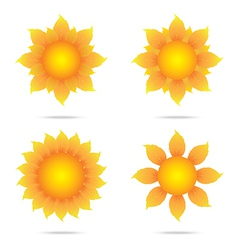 Eco sunflower set vector image vector image
