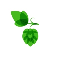 Hops minimalistic color overlay style vector image vector image