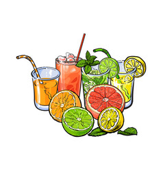 orange grapefruit lime lemon juice and fruit vector image