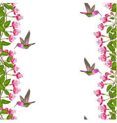 fuchsia and hummingbird seamless border vector image