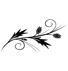 black branch for design vector image