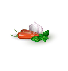 Set of pepper mint and garlic in realistic style vector