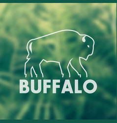 buffalo outline for logo design vector image vector image