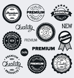 drawn vintage labels vector image