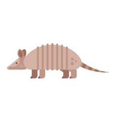 Flat style of armadillo vector