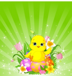 Easter chick background vector