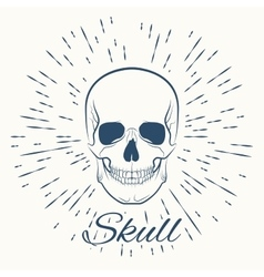 Skull and vintage sun burst frame vector