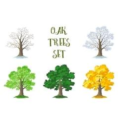 Oak Trees Set Seasons vector image vector image