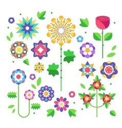 Collection of flowers Buds and leaves vector image vector image