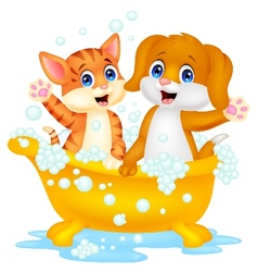 Cute cartoon cat and dog bathing time vector image