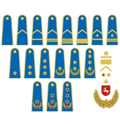 Lithuanian Air Force insignia vector image