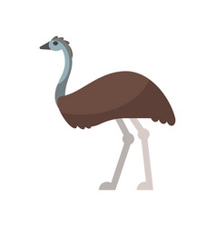 flat style of emu vector image