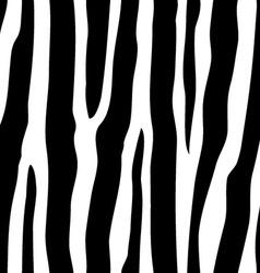 Seamless zebra pattern vector