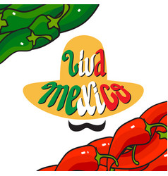 handwritten words viva mexico cartoon sombrero vector image