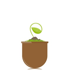Flower pot with new sprout vector