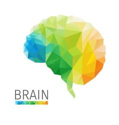 Brain polygon vector