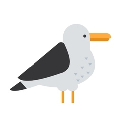 Great gull bird vector