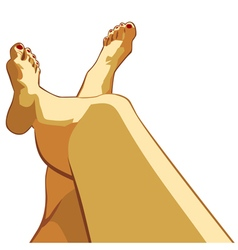 Beautiful female legs vector image