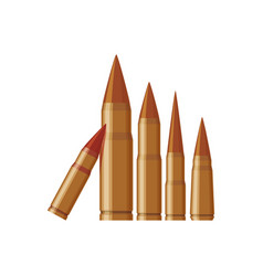 isolated bullets gun vector image vector image