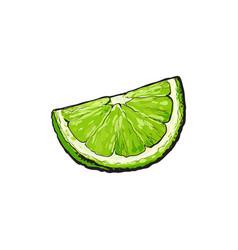 Quarter segment piece of ripe green lime vector