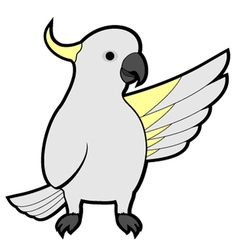 Cockatoo vector