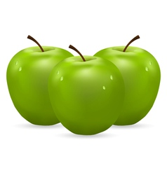 three green apples with water drops vector image vector image