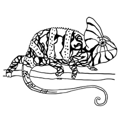 Hand drawn chameleon vector image