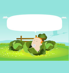 Its a boy newborn baby in a cabbage vector